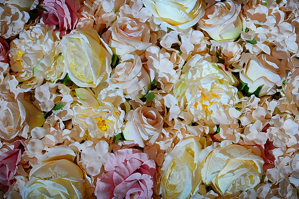 Flower Wall Backdrop Hire For Weddings